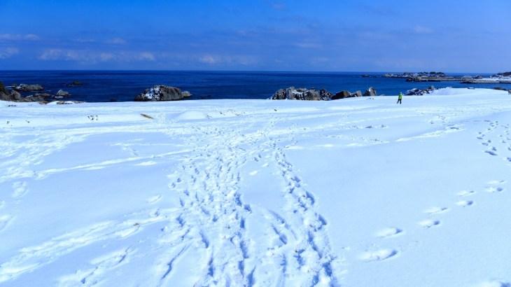 根雪の意味は?積雪との違いは雪が積もってからの期間?