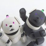 ペットロボットの人気・お勧めは?ギネス登録の人工知能搭載型も!