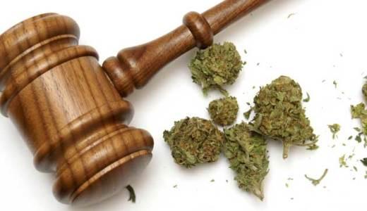 大麻の使用は合法?日本で伝統行事に使われていたって本当なの?