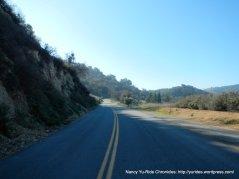 climb up to the ridge-Adelaida Rd
