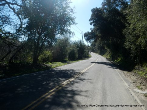 gentle climb up Foothill Rd
