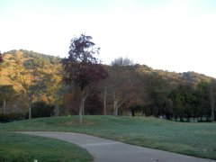 at Marinwood Park