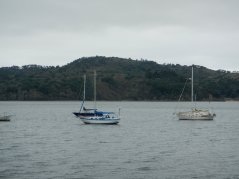 blue waters of Tomales Bay