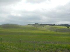 soft rolling green hills