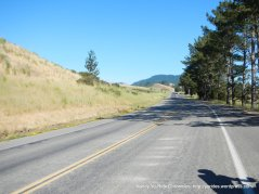 on Nicasio Valley Rd