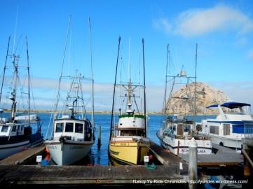 sportfishing boats