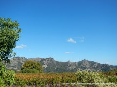 Pritchett Peaks
