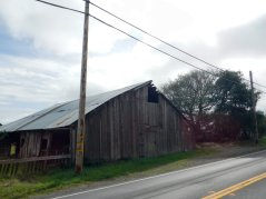 old barn on CA-1