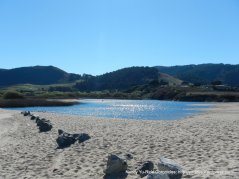 Carmel River State Beach-view of forests