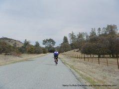 Vineyard Canyon Rd