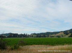 Cherry Glen Rd-open valley