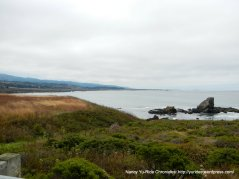 Pigeon point coast