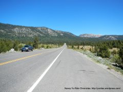 Luther Pass Rd