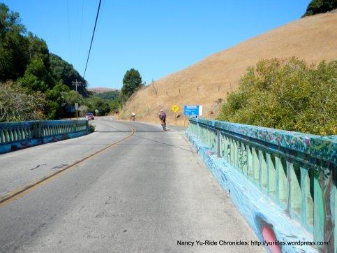 colored bridge