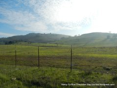 santa teresa hills