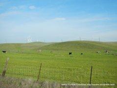montezuma hills rd