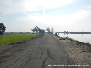 levee trail-montezuma slough