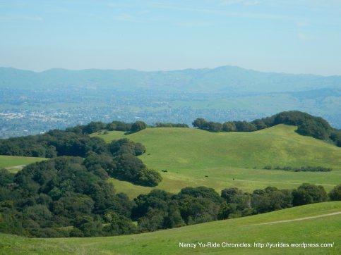 mott peak views