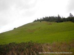 shroyer mountain