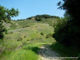 black oak trail views