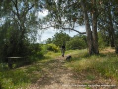 trail gate