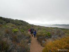 sand trail to boardwalk