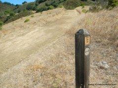 left-stay on rocky ridge trail