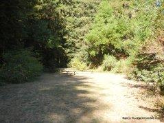 stream trail picnic area