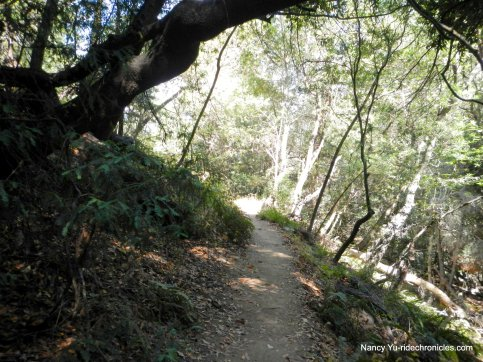 french trail