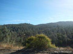 sage canyon rd/CA-128 E
