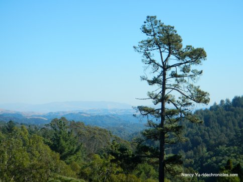 east ridge view