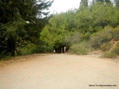 to vollmer peak trail