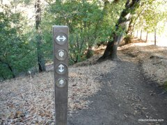 stay on madrone trail
