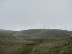 altamont pass wind turbines