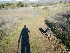 ohlone trail