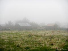 lougher ranch