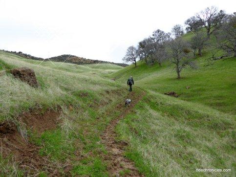 oil canyon trail