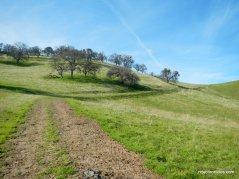 old homestead loop trailold homestead loop trail