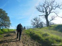 acorn trail