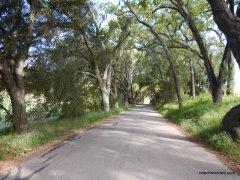 willow creek rd
