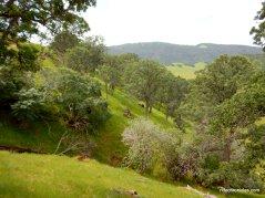 round valley