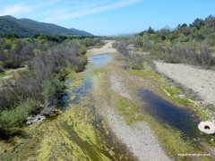 santa ynez river