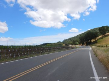 wooden valley