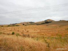 los osos valley rd