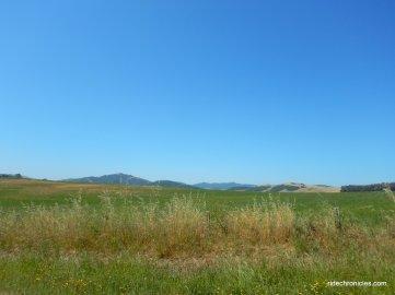 springhill rd
