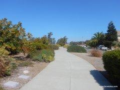 bay trail-wetlands edge rd