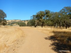 meadow trail