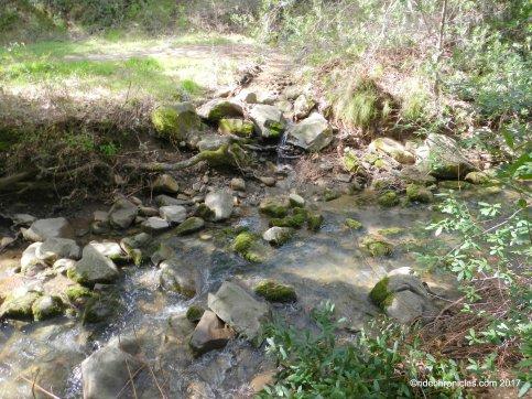 sinbad creek