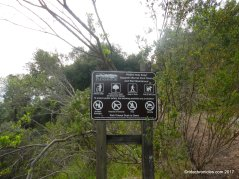 longview trail