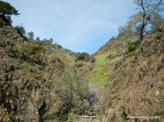 rhine canyon